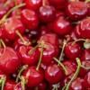 bc-cherries